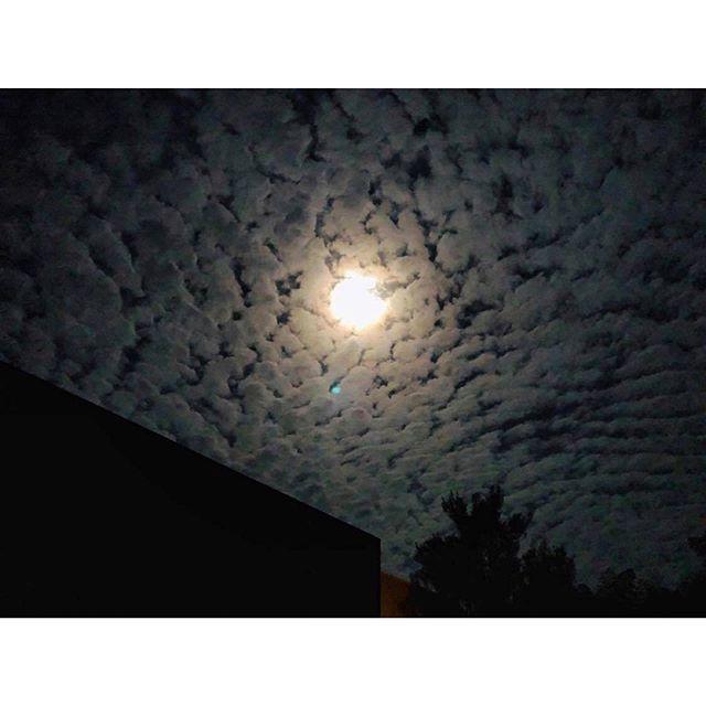 ・「お月様がまん丸なので、そろそろその気になってくれないか」とお腹の新しい人を待つ。月の満ち欠けが友の出産を司ってるなんて、何だかロマンティック。3月の満月は「Worm Moon」。サツキ(五月)の月も見守りながら、便りを待つことにしよう。今夜の東京は雨だけど雲の上には大きな月が輝いてる。写真の月は、その友の空に輝いていた「いつかの月」。The phases of the moon govern birth.  Romantic.  The moon is also in my name. #moon #wormmoon #満月 #3月 #march #サツキの日記 #周南の月 #yamaguchi #山口 #蓮の湯