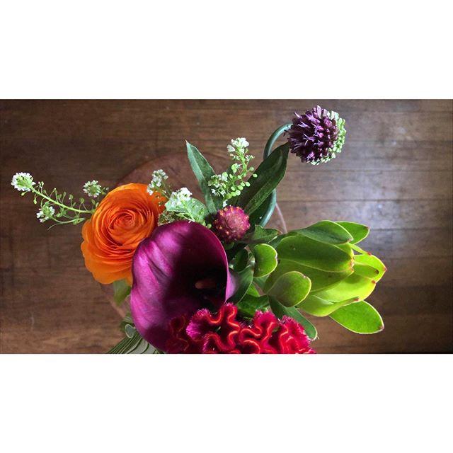 """・サツキの五月がはじまりました。今年は殊の外思い出深い年になるのかな。いや、するんだ。大好きな月大好きな季節新緑、若葉燃る季節。 My May has begun. """"Satsuki"""" means """"May"""" in Japanese.  My favorite month  Favorite season.  This year is going to be a particularly memorable one.Flowers are beautiful flower shop """"SHAM ROCK"""" in Hiroshima.  The most imaginative place.#satsuki #五月 #may #5月 #サツキの日記 #広島 #hiroshima #shamrock #シャムロック #パフィオ #ラナンキュラス #カラー #ケイトウ #アリウム #バラ #アスチルベ # Ranunculus #Paph #Callalily #Celosiaargentea #allium #rose #astilbe"""